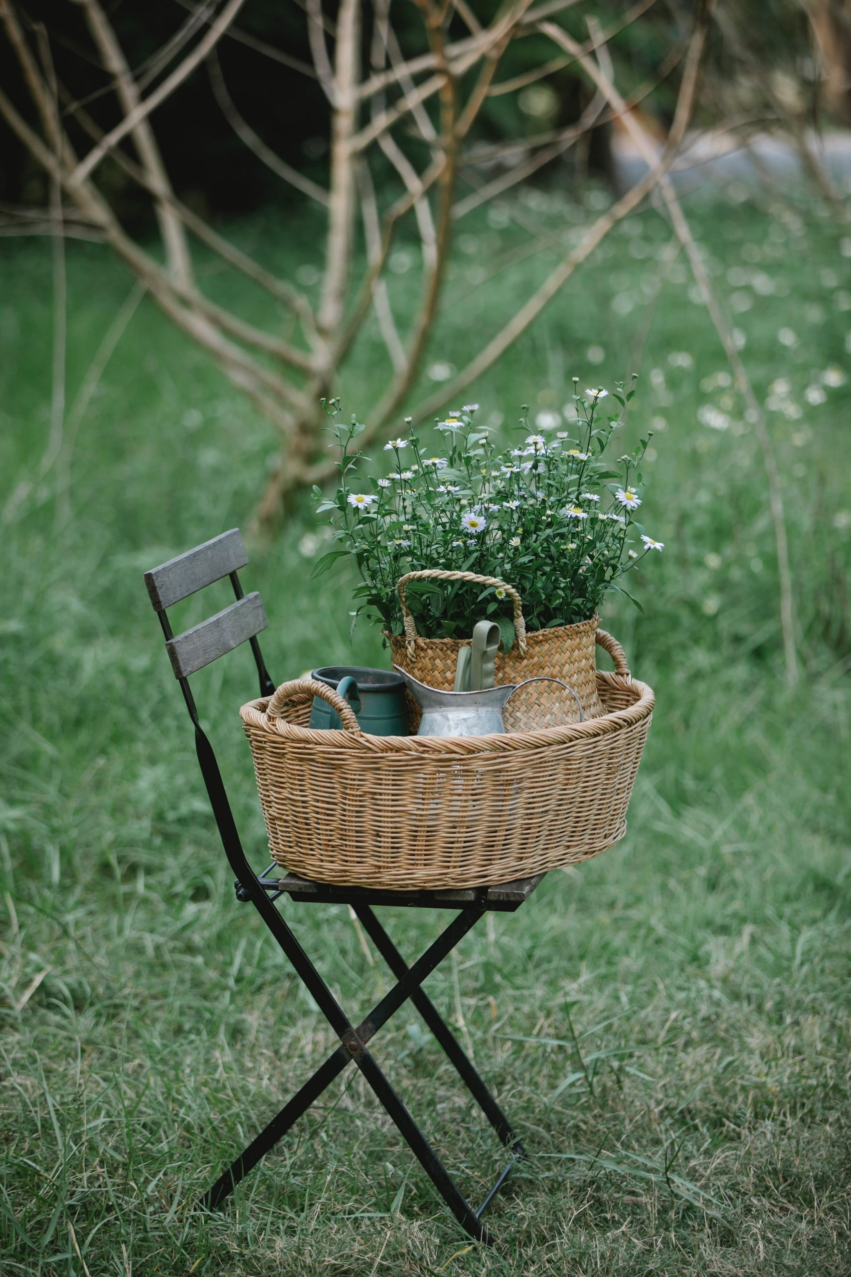 Longaberger Basket images