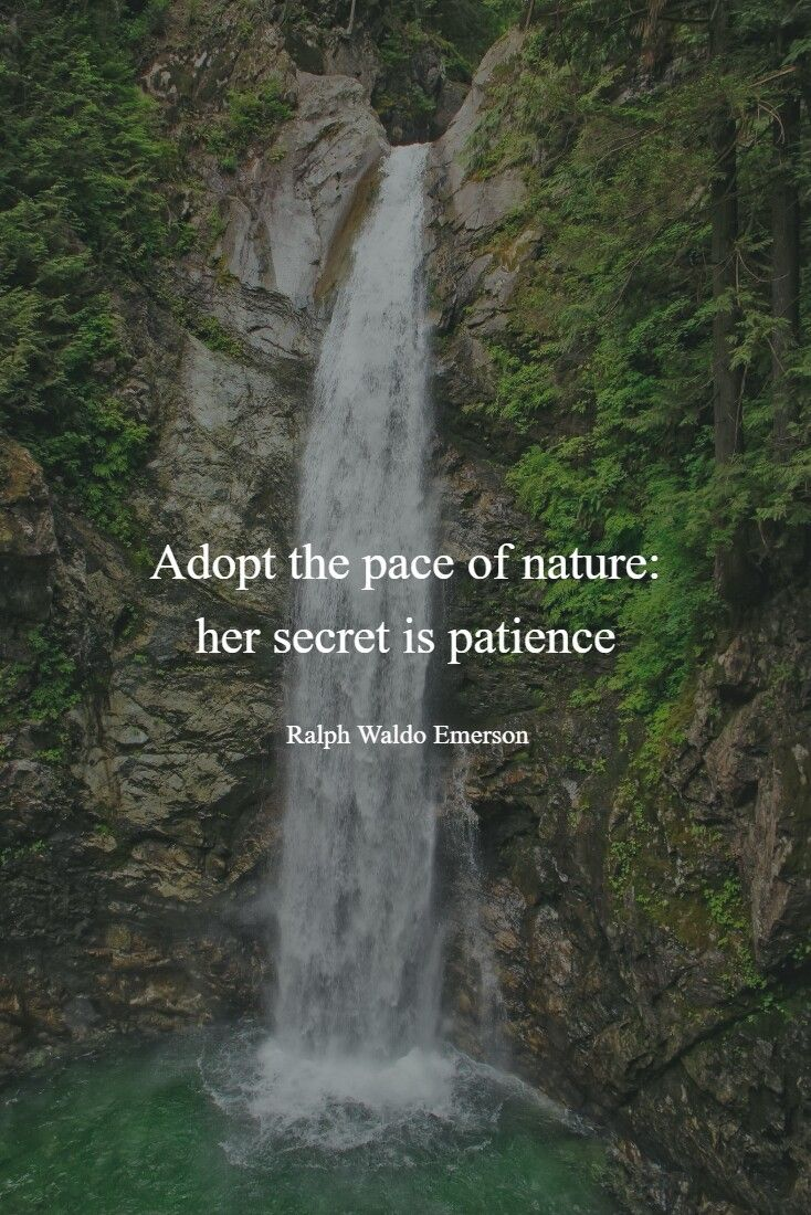 Wise Sayings about Waterfalls