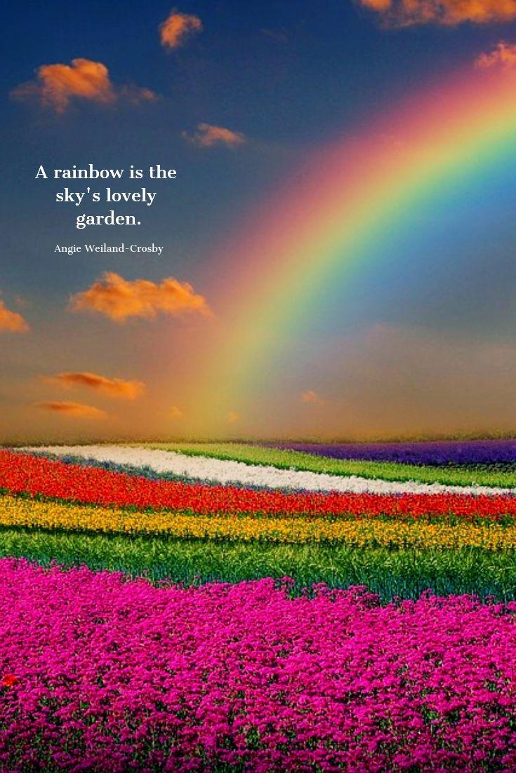 rainbow-quotes