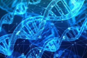 nucleic acid extractors
